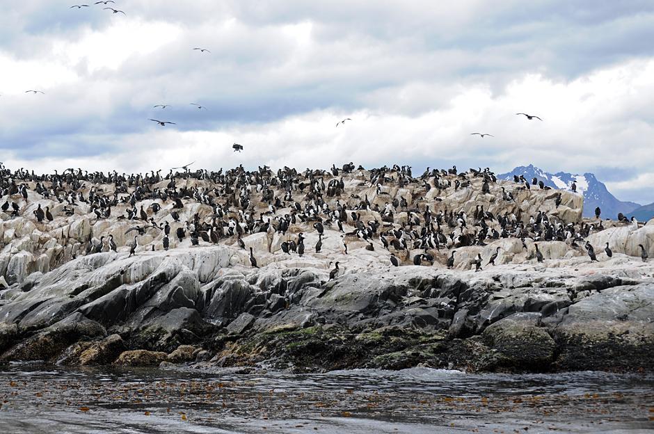Tierra del Fuego - Feuerland, Argentina