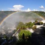Rainbows everywhere